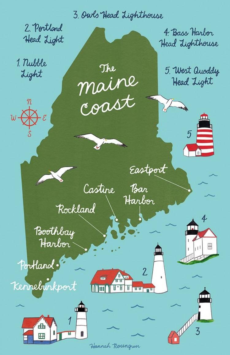 outcross breeding new foundations nya gener Maine Coon genetisk variation uppfödare breeding Maine Stockholm