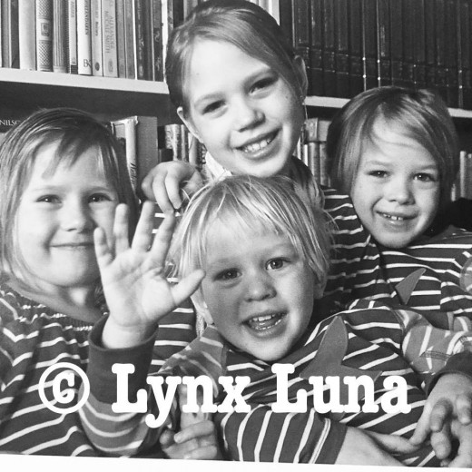Lynx Luna Maine Coon katteri kattungar